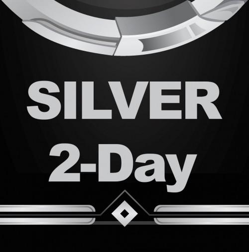 silver-2.jpg