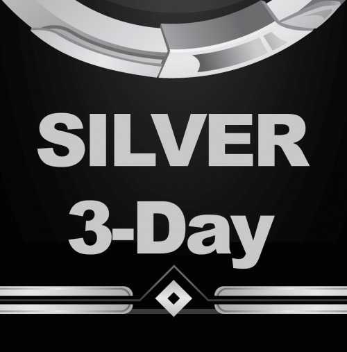 silver-3.jpg