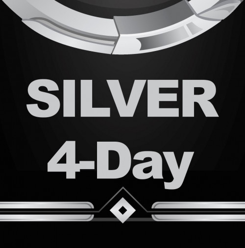 silver-4.jpg
